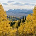 Ripple Creek Pass with Fall Colors